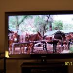 Samsung LN52A650 on HD Theater Channel