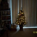 New Christmas Tree, 2012