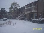 Snowstorm Jan29-2010 03