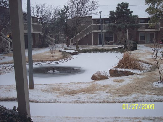 OKC Apartment: Frozen Pond