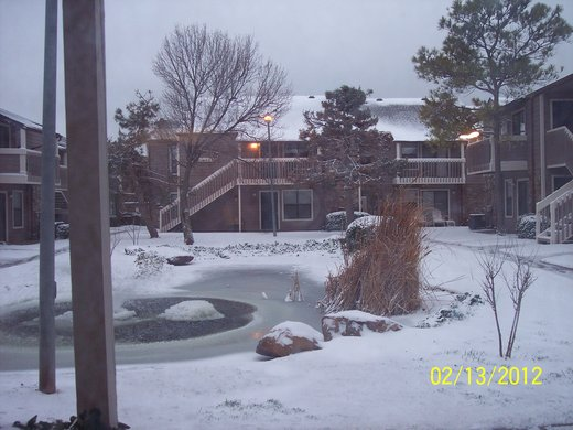 Snowstorm: February 13, 2012 #1